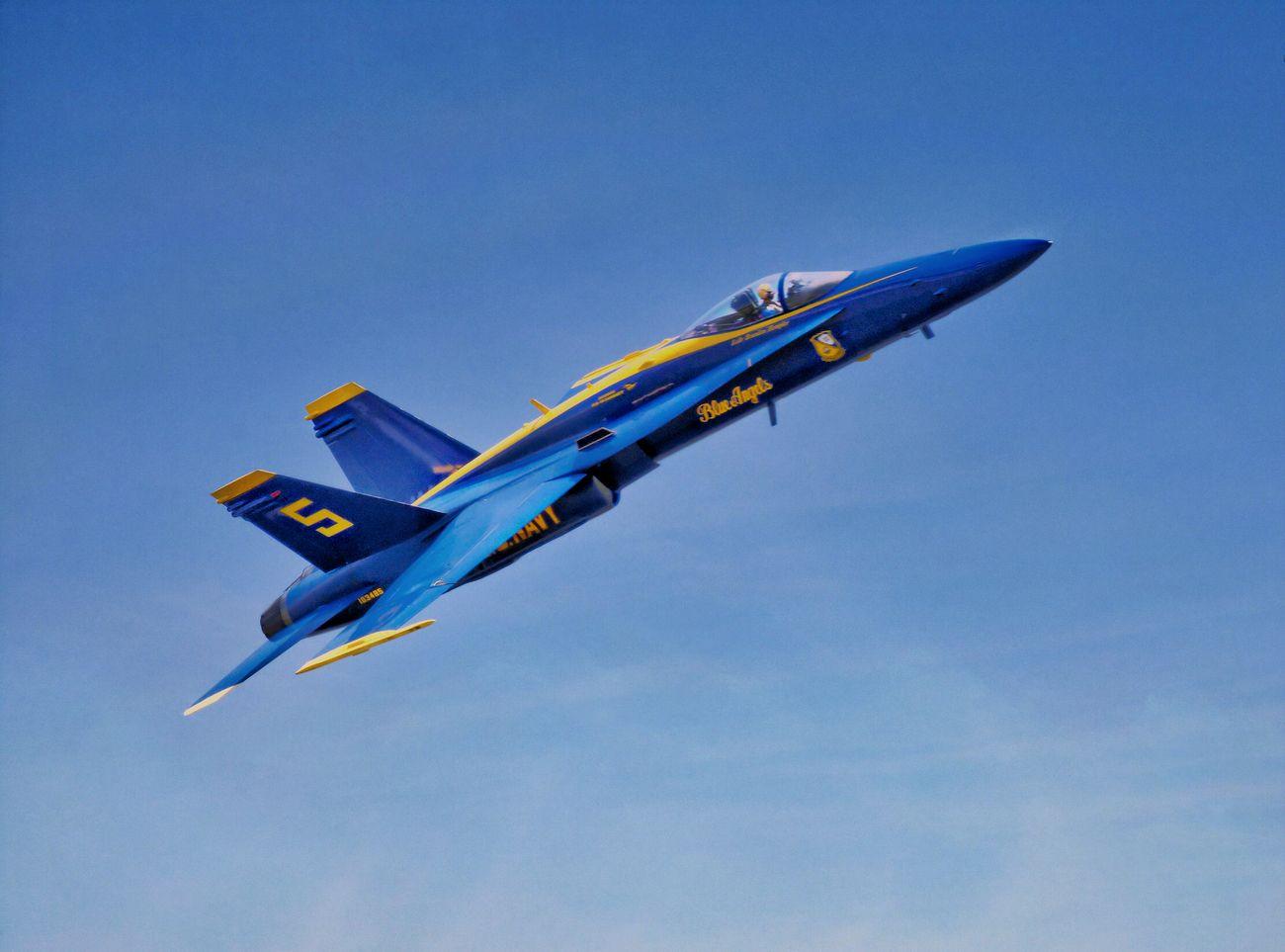 Taken near the Naval Aviation Museum in Pensacola, FL - 06.11.19