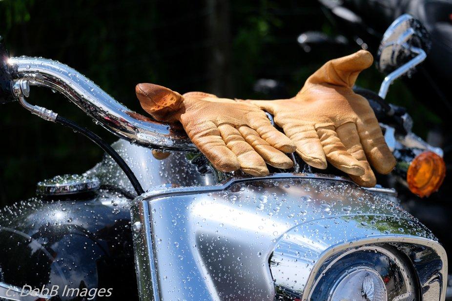 Wet bikers gloves left to dry