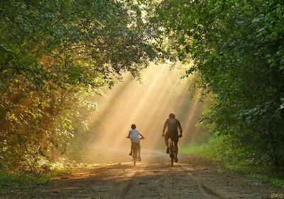 Sun & Son...