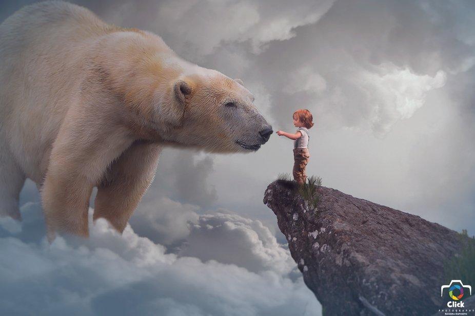 In dreams my friend the bear