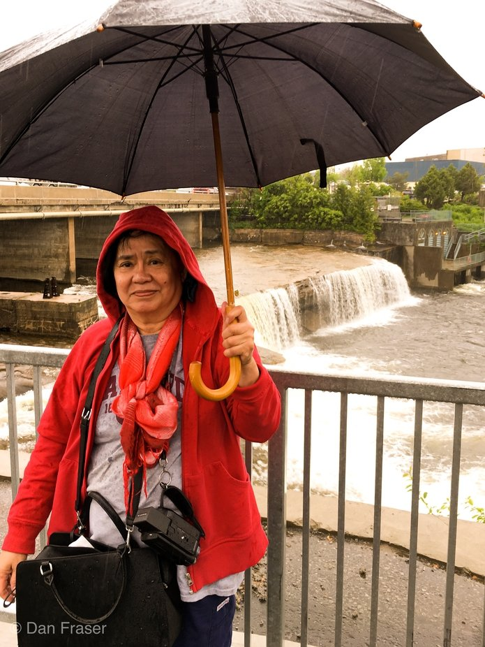 Rainfall at Fenelon Falls
