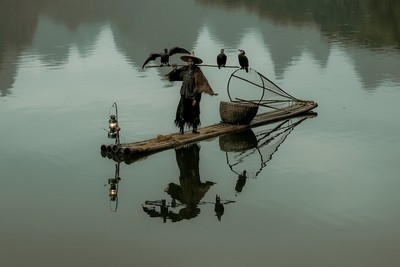 Cormorant fisherman at the  Li river