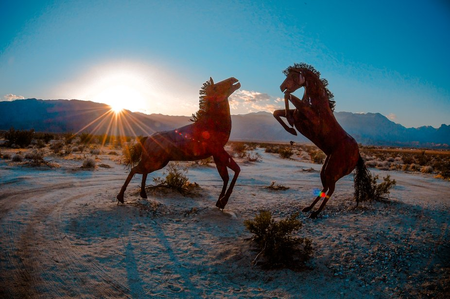 horse sculpture in Borrego Springs, CA
