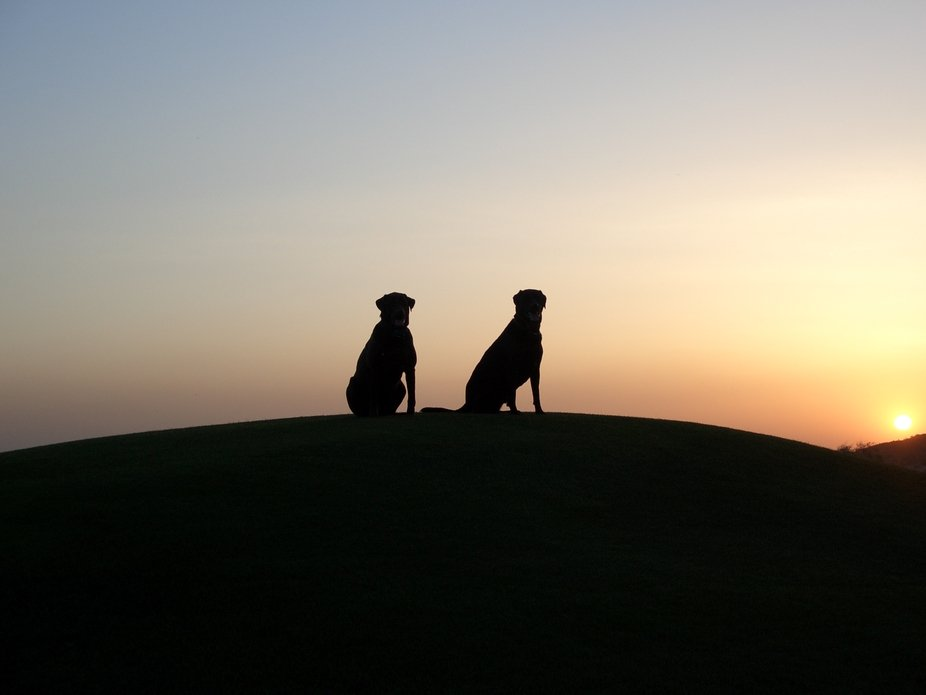 Jacob and Joshua watch the sun go down