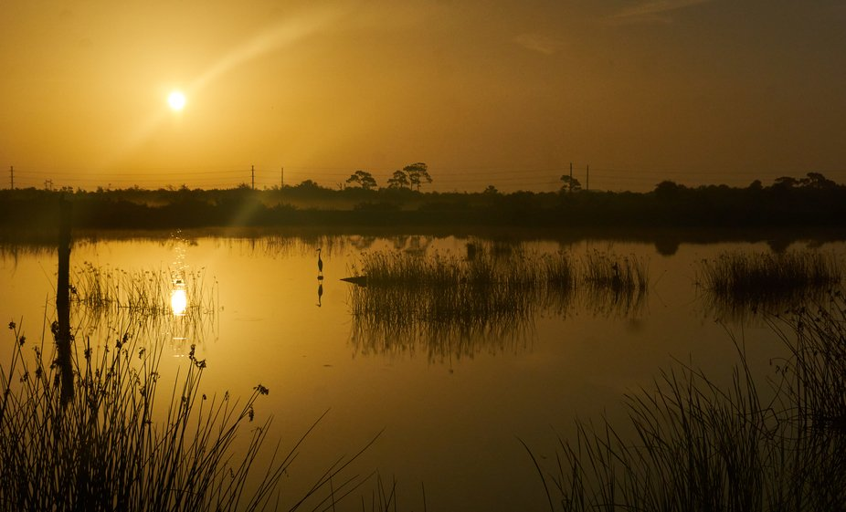June 22th Sunrise on the wetlands