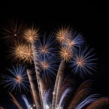 firework-3426