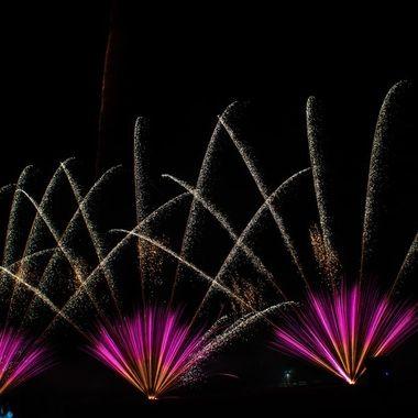 firework-3481