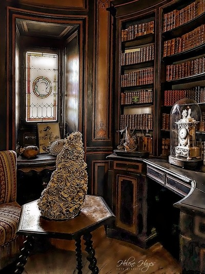 The tiny beautiful library of the Chateau Bussiére-France