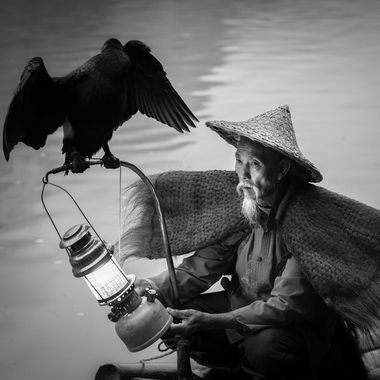 The moment i saw his face, and the way he looked at the bird, i knew the photo i was going to make. I just had to wait for the perfect moment to capture this close up