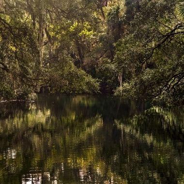 Serenity at Blue Springs