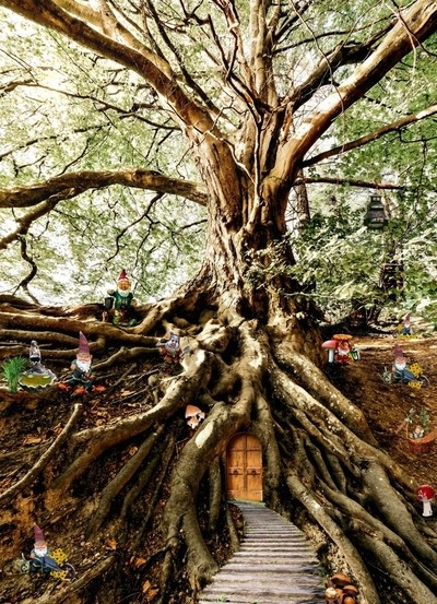 Dwarf Tree House
