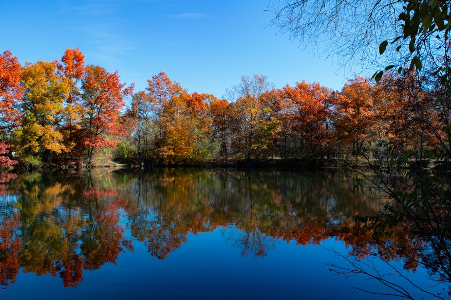 Autumn is a perfect time of the year for colorful photography when the leaves change colors on th...