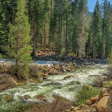 River In Sequoia National Park