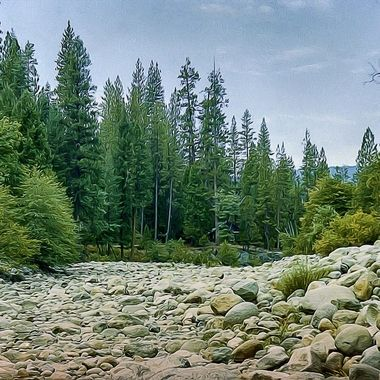 Southern CA river bed, old 35mm neg