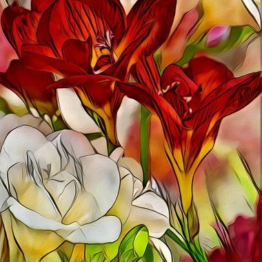 Flaming Freesia