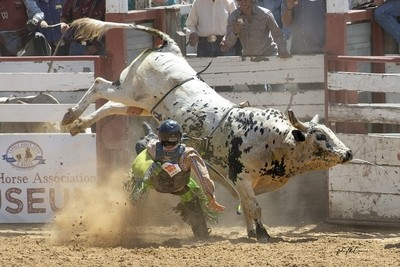 Unplanned Dismount on Bull Ride, Bolado Rodeo, Tres Pinos, CA