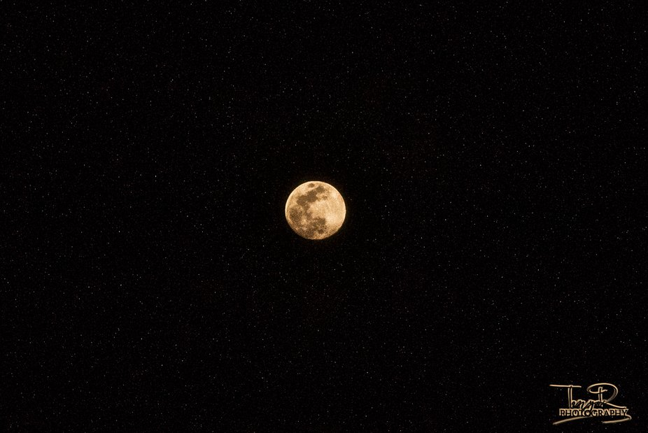 Simple Moon Capture.   I did even realize what I had until I got home!