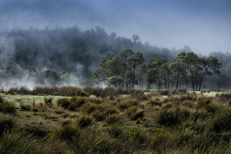 Fog was slowly lifting up off the Button Grass and Gum-trees near the river.