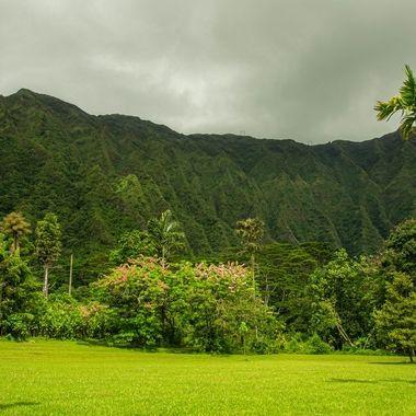 Ho'omaluhia Botanical Garden III, Oahu, HI