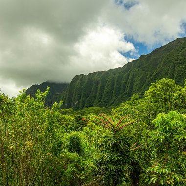 Ho'omaluhia Botanical Garden II. Oahu, HI.