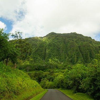 Ho'omaluhia Botanical Garden. Oahu, HI.
