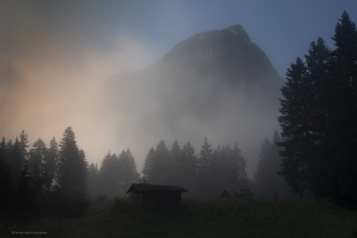 La brume du matin...