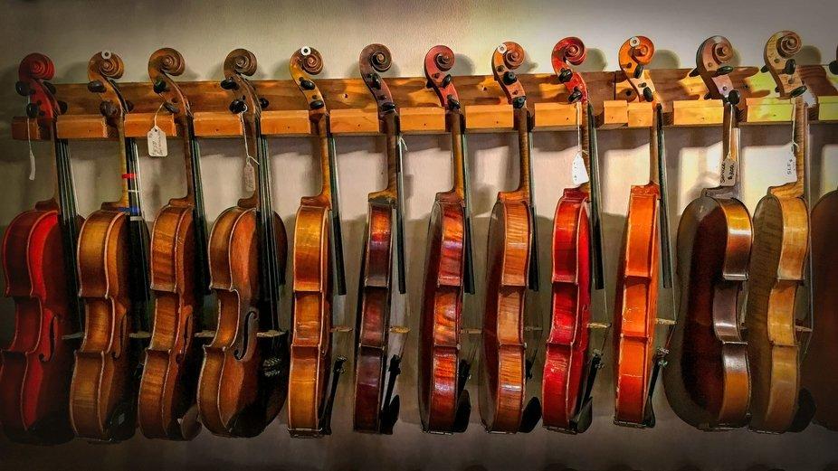 MV Fiddles_16x9_XXX