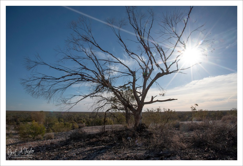 If you follow the green car door tour in Lightning Ridge you will arrive at First Shaft Lookout, ...