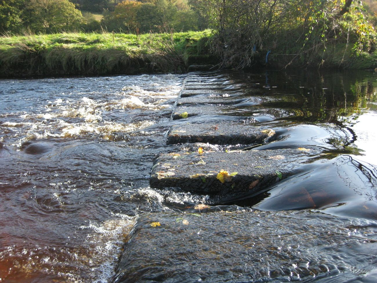 Taken in the village I grew up in in rural Wales, the Foel.