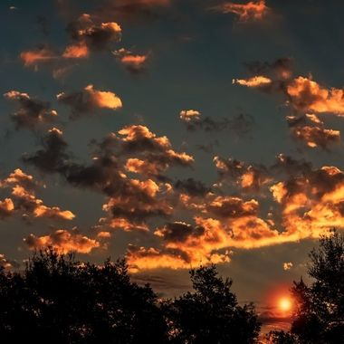 Golden Cotton Clouds NW