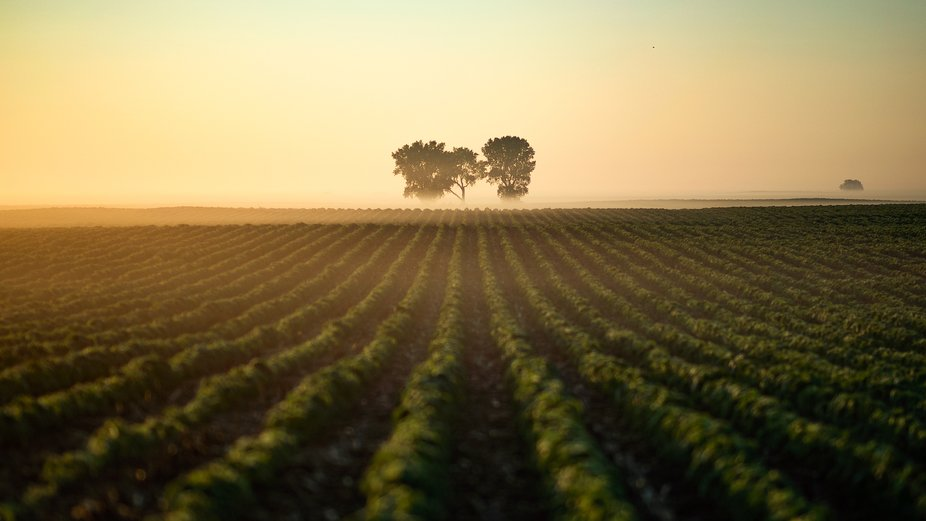 Good Morning South Dakota