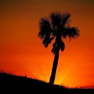 Neverending Sunset NW