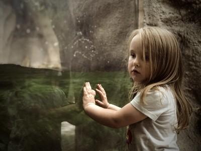 Luna watching Luna the albino aligator.