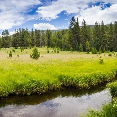 Panorama of Anderson Meadows in Wise River, MT