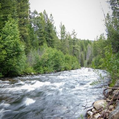 Wise River, MT.