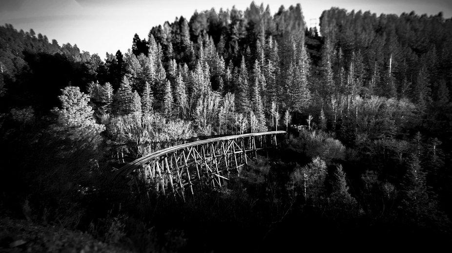 Logging Tressel - Cloudcroft, New Mexico