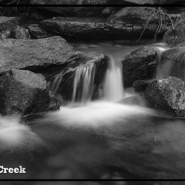 Stagg Tree Creek copy
