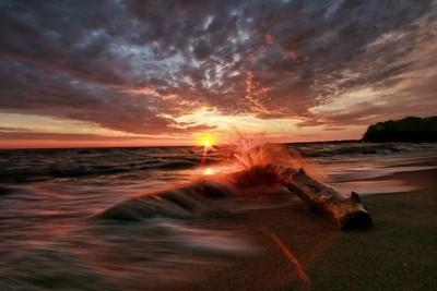 """""""Splash of Sun"""""""