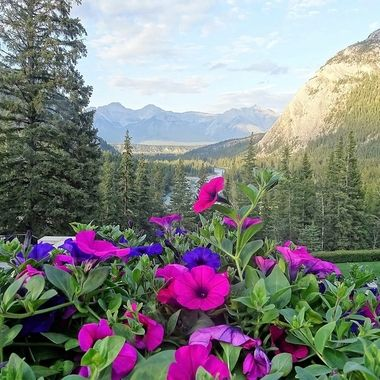 Views From The Fairmont Banff Springs (4)