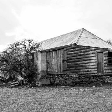 Maniototo Wool shed