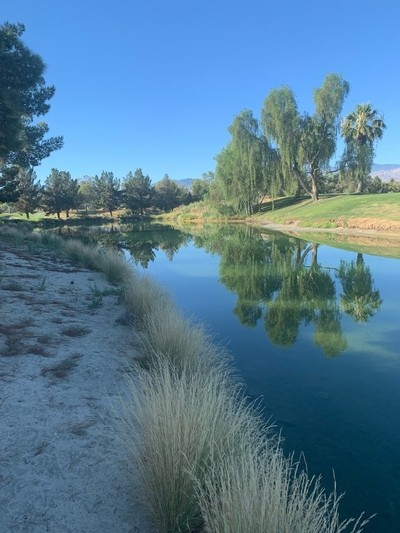 Perfect reflections vacation club palmsprings california