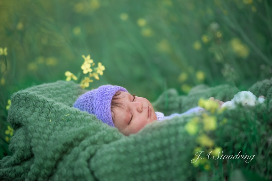 baby Napping in the Garden