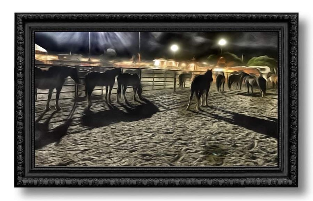 A photo of an artistically enhanced photo (using super photo)  of the horses used in the rodeo at the end of the night.