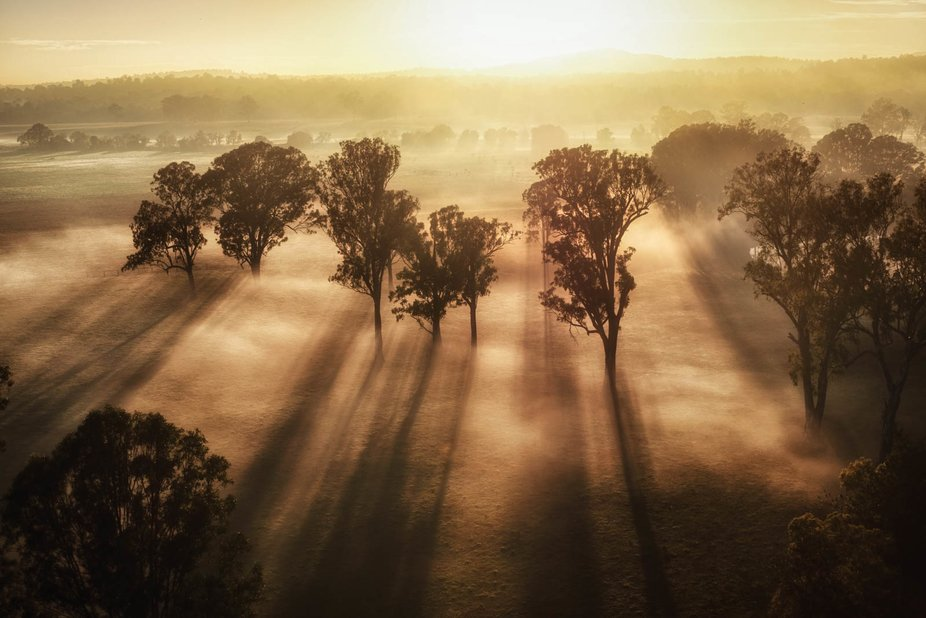 This is the stunning view from where I live in the Scenicrim in Queensland. It was taken from a h...