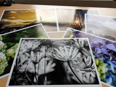 Photos of photos of nature I