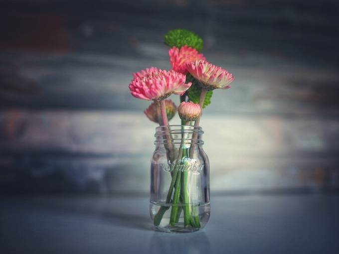 Table Flowers II by Morgan_Lytle - Still Life Photo Contest