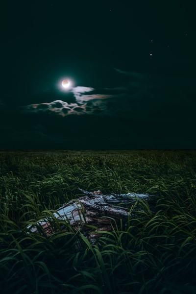 Eclipse moon 2019