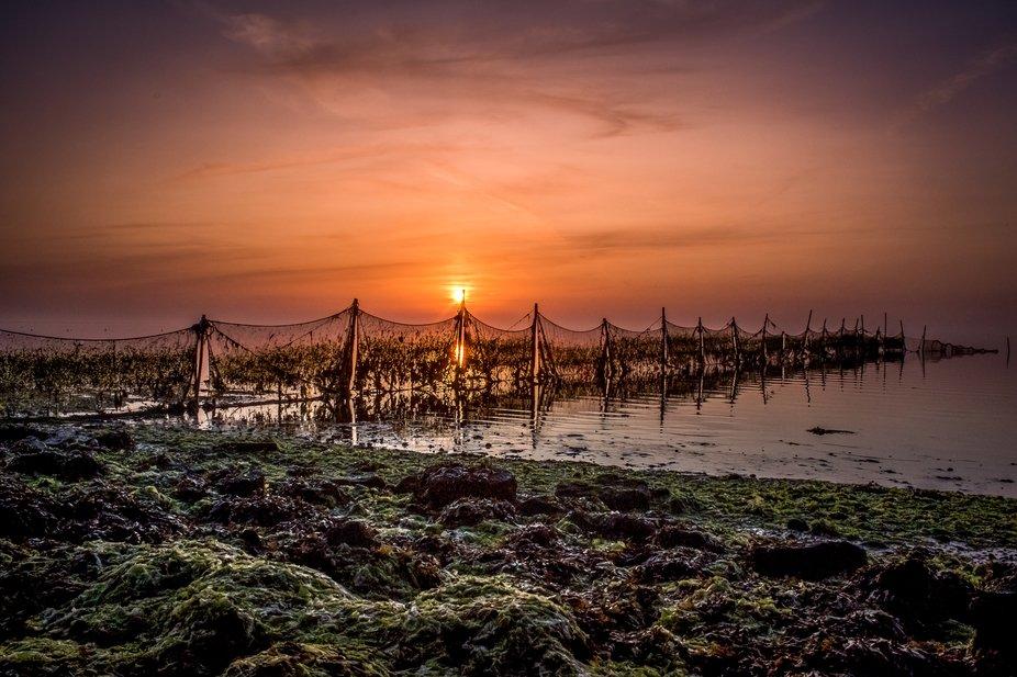Frisian Sea during sunrise