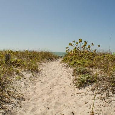 Florida beach bath to the beach