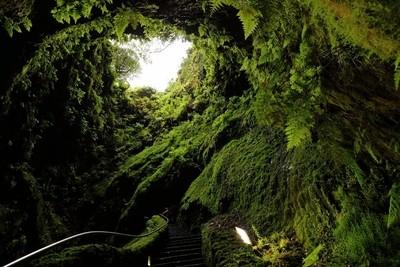 Cavern of Coal 7M9A7068a.JPG